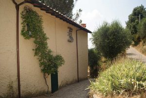 Farm house on 'Via Francigena'