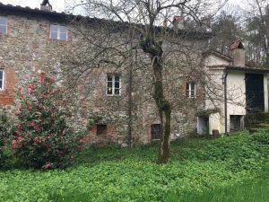 Farm House – DONATELLA