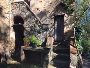 The Vet's Cottage