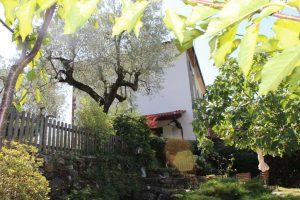 Land House Leonardo